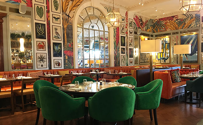 Brighton Ivy restaurant designer used historic features